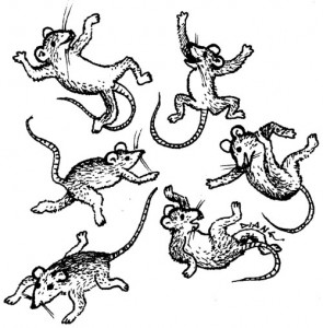Of Mountains and Mice, Illustration by Diane Wood